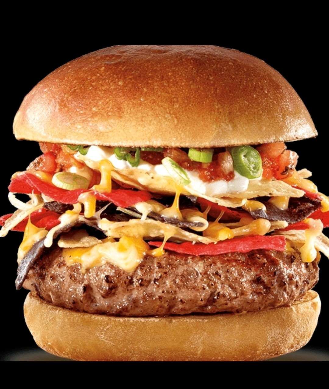 6 OZ HAMBURGER ONLY $4.99